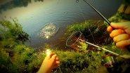 Рыбалка на Волге.Ловля жереха.Мой первый жерех.