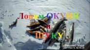Fishing ловим окуня и щуку Якутия