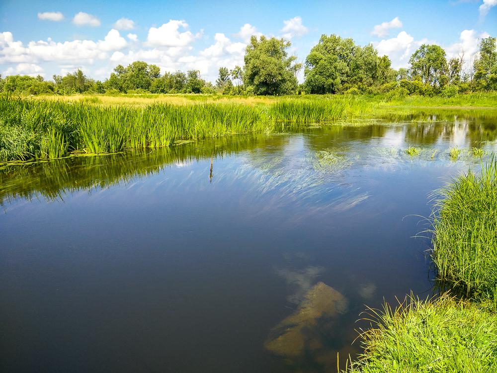 Малая речка **