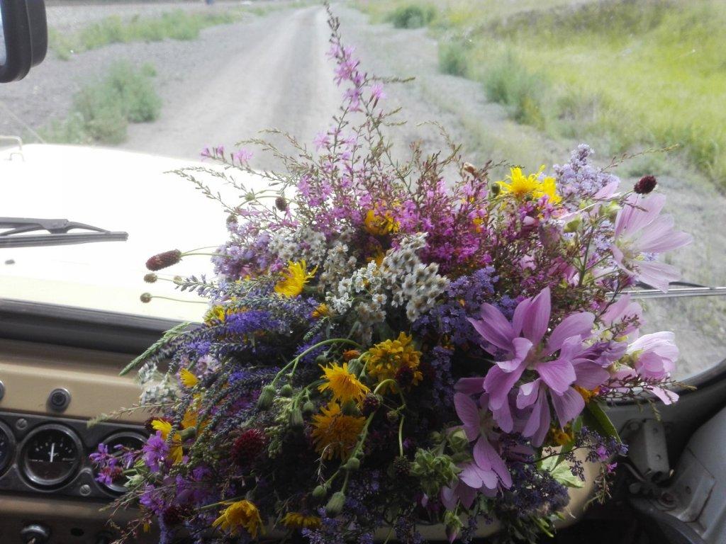 Букет полевых цветов доченьке.