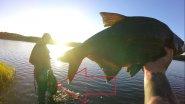 Вот это рыбалка.Лещ здоровенный Лещ.Как поймать крупного леща