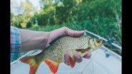 В поисках 1 кг краснопёрки на ультралайт. Ловля на мелкие приманки белой рыбы и не только.