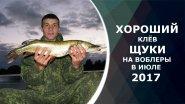 Хороший клёв щуки на воблеры в июле 2017. Отчет с рыбалки