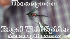 Повязушки. Royal Wolf Spider