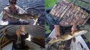 Ловля щуки на спининнг. Джерковые приманки vs колебалки и силикон. Двухдневная рыбалка. День первый.