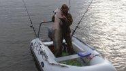 СОМ на 35 кг, ловля сома в Астраханской области, Харабалинский район, река Ахтуба рыбалка 2017