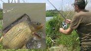 Моя рыбалка 2-14. Карп.