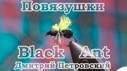 Повязушки. Black Ant