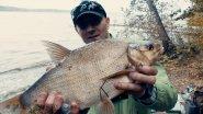 Самоподсекающая Удочка | Ловля Леща | Рыбалка Осенью 2017
