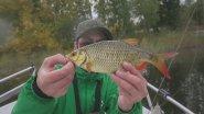 Ловля краснопёрки на ультралайт осенью. Искал 1 кг краснопёрку,а поймал. Какими приманками я ловлю.