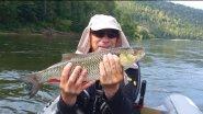 Сплав по реке Рыбалка на спиннинг Ловля гигантского голавля