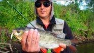 Ловля на спиннинг блеснами на малой реке