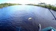 Сплав по таёжной реке Пим⚡️Сплав на одноместной лодке в 20 км. ⚡️и не много рыбалки