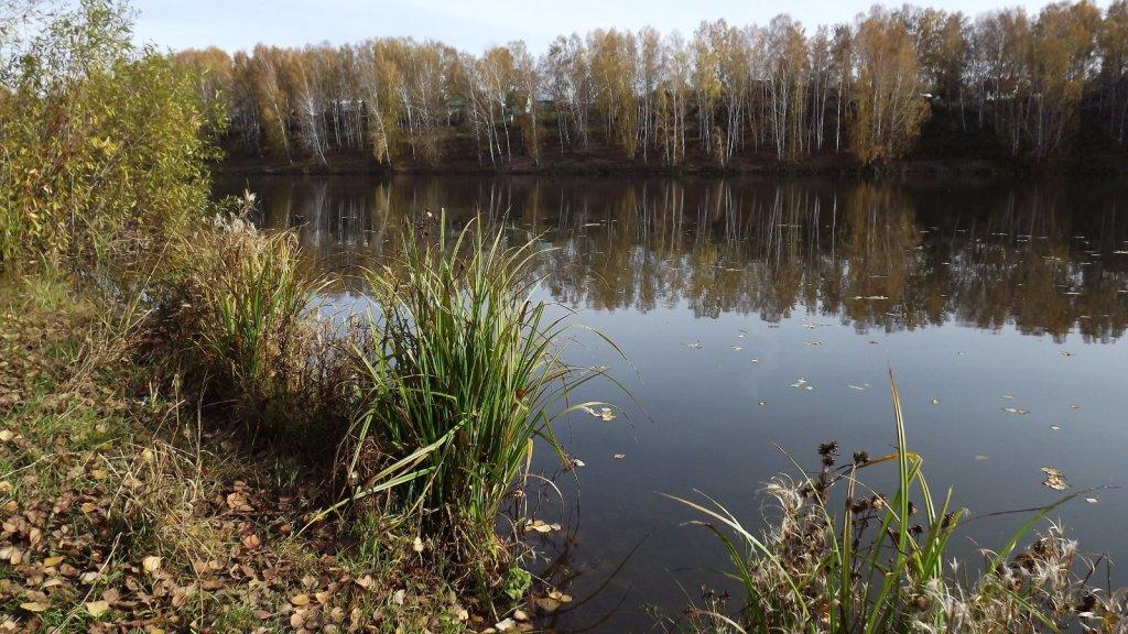 Дачное озеро или рыбалка для души