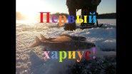Первая осенняя подледная рыбалка на хариуса 06.10.2017 г Якутия Yakutia