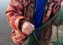 Ловим плотву, сегодняшний улов.