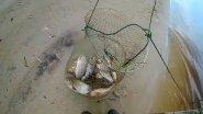 Плохая погода рыбаку не помеха/Ловля язя на спиннинг/Ловля язя на донки/Часть первая