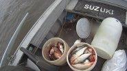 Промысловая рыбалка белой рыбы. Ловля сига сетями на крайнем севере.