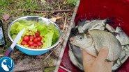 Ловля леща на заброс на #фидер осенью. Отличная рыбалка. Готовим на природе. | Рыбалка с Родионом