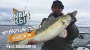 Судачье эльдорадо. Рыбалка на Нижнекамском водохранилище. Рыбий жЫр 4 сезон выпуск 14