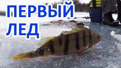 Перволедье в Сибири. Залив Тарево. Братское водохранилище.