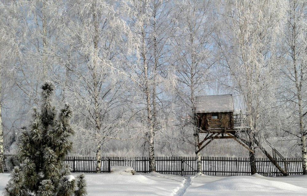 Разукрасила зима