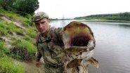 Протока р.Печора, щука на 2.2 кг взяла на мелкий лепесток.