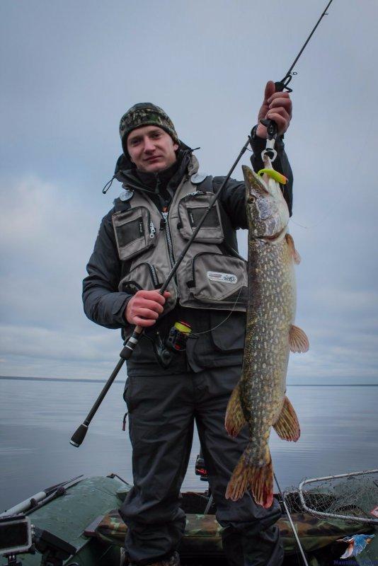 Экипировка: Основные принципы ловли хищной рыбы с эхолотом