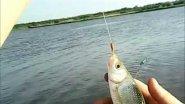 рыбалка на Водозаборе, Благовещенский район