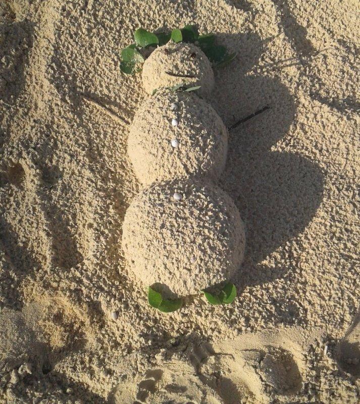 Летом хочется зимы, а зимой лета ...
