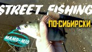 Street fishing по-сибирски, или как Tori помогла окуней наловить
