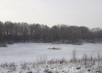 Одно из колыванских болот