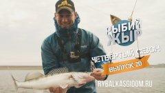 Что делает щука на судачьих точках? Астраханская рыбалка осенью. Рыбий жЫр 4 сезон выпуск 20