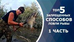 ТОП 5 запрещенных способов ловли рыбы. Зрелище не для слабонервных!