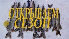 Щука на жерлицы зимой!!!отличное открытие сезона!!!
