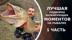 Лучшая подборка шокирующих моментов на рыбалке. Вот это рыбалка! Ты не поверишь!