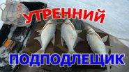 Утренний клев подподлещика декабрь 2017, не Первый лед