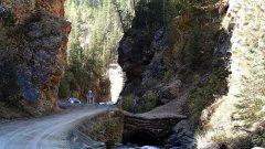Ущелье в горах Алтая