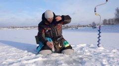 Секреты поиска окуней на зимней рыбалке + 4 способа прикормки