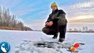 Открыл сезон зимней рыбалки. Поймал окуня и приготовил вкусный обед | Рыбалка с Родионом