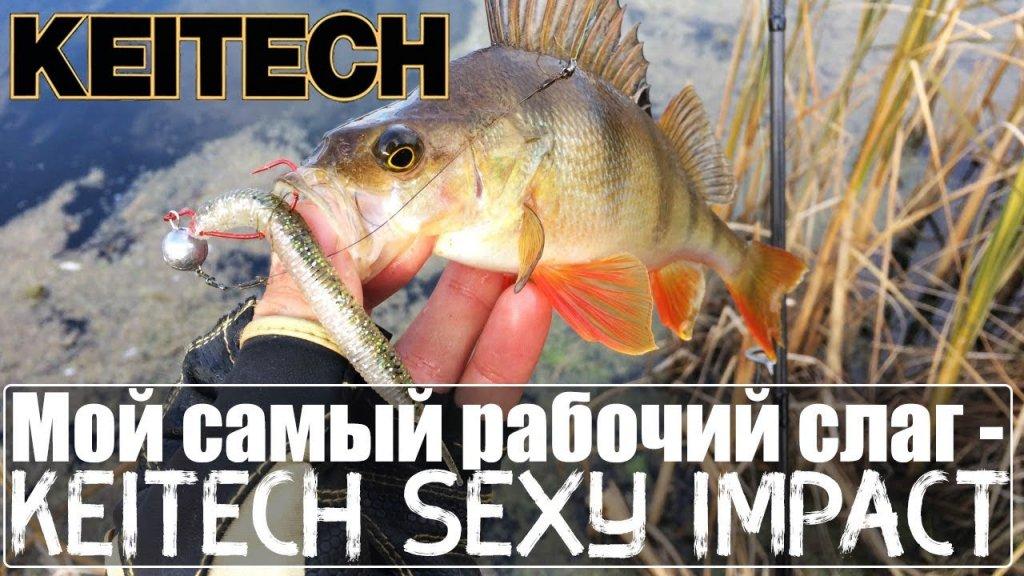 Мой самый рабочий слаг - Keitech Sexy Impact