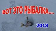 Вот это рыбалка, Вот это раздача окуня на Песчанке, январь 2018  Рыбалка 2018