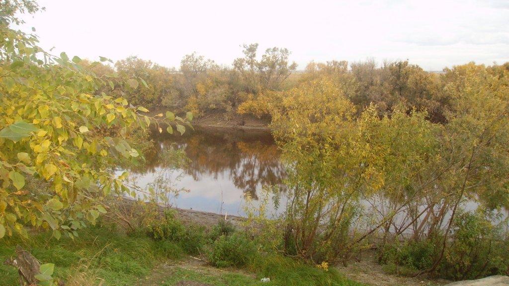 Ловля щуки троллингом на малых реках.