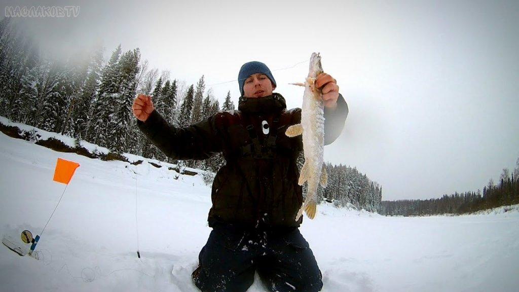 Февральская рыбалка на жерлицы / утренние поклевки / таежная река во всей красе