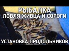 Рыбалка / ловля живца и сороги / установка продольников