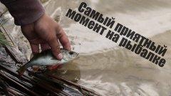 Самый приятный момент на рыбалке