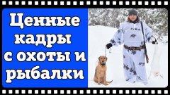 Ценные кадры #3. Природа, охота, рыбалка, наши трофеи, охотничьи собаки и красивейшие пейзажи.