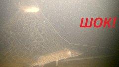 ЖЕСТЬ НА РЫБАЛКЕ! Настоящий рыбак так не сделает! Подводная съемка