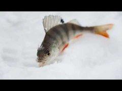 Микроджиг.Морозный февраль.Рыбалка в -20