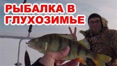 Удачная рыбалка в глухозимье. Золотой окунь